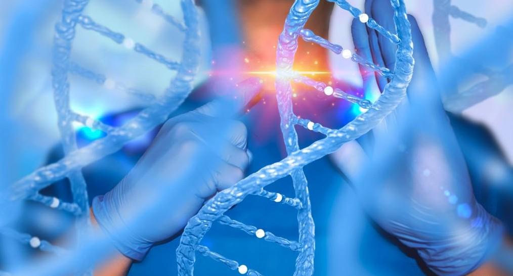 теория вечной жизни наука