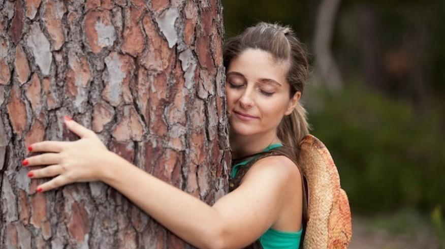 энергетика деревьев обнять