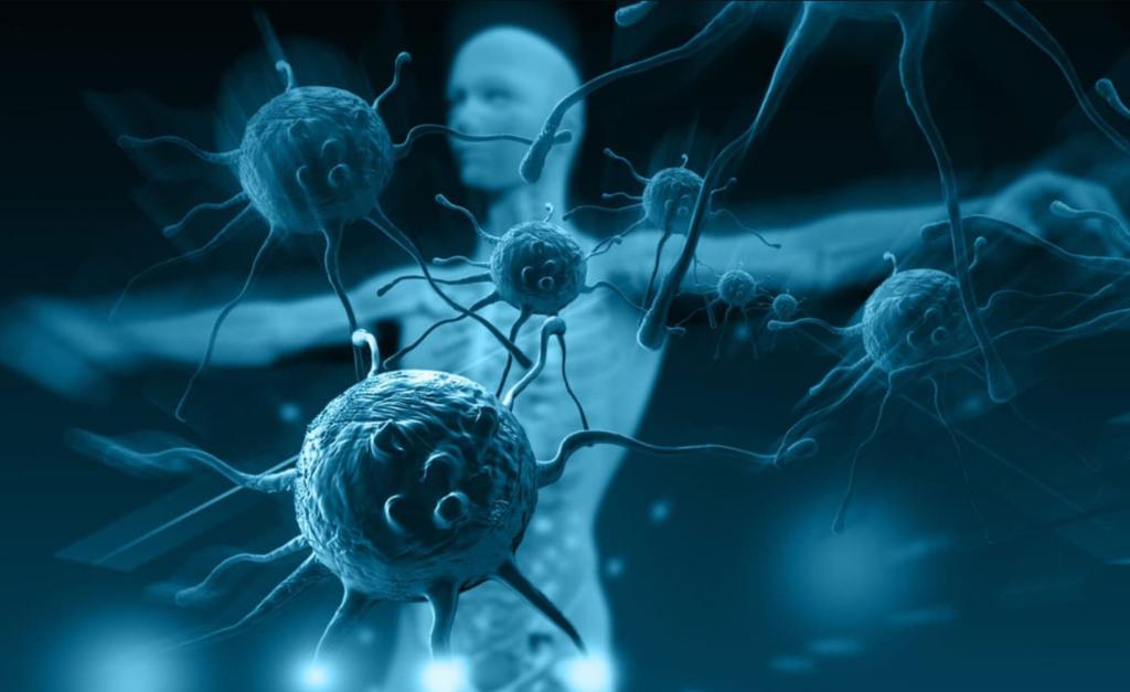 Иммунная система человека его виды